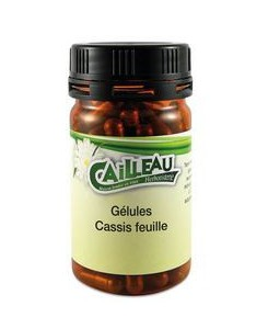 Cassis Feuille